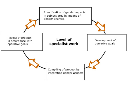 The process of implementing Gender Mainstreaming at the level of specialist work